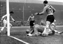 albion-wolves-feb-64_2