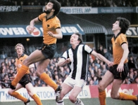 albion-wolves-apr-80
