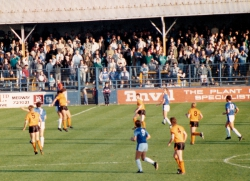 gills-wolves-88