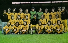 wolves-77-team-colour-copy