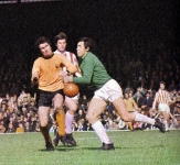 wolves-stoke-gould-colour-copy