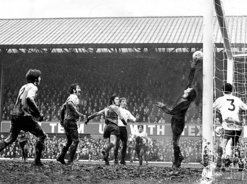 derby-wolves-cup-71-3-copy.jpg